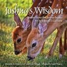 JoshuaWisdom_CoverDesign